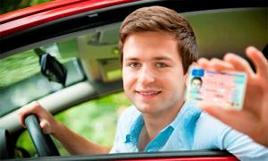 Где посмотреть, кем выдано водительское удостоверение