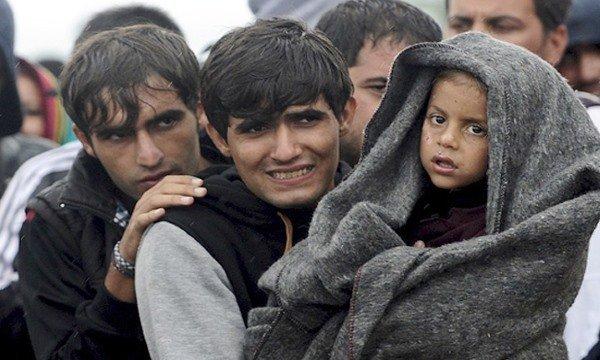 Права и обязанности беженцев: общемировые правила и российские законы