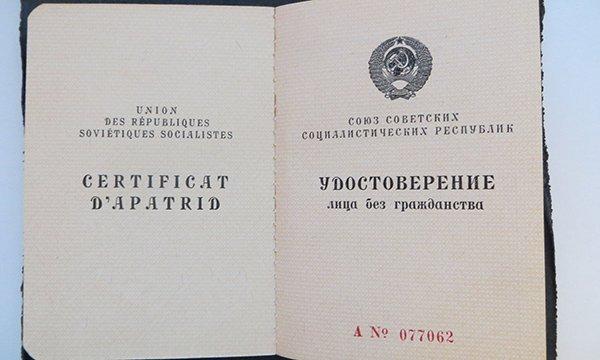 Натурализация в РФ лица без гражданства