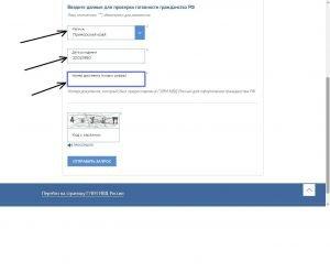 Заполнение формы проверки гражданства РФ
